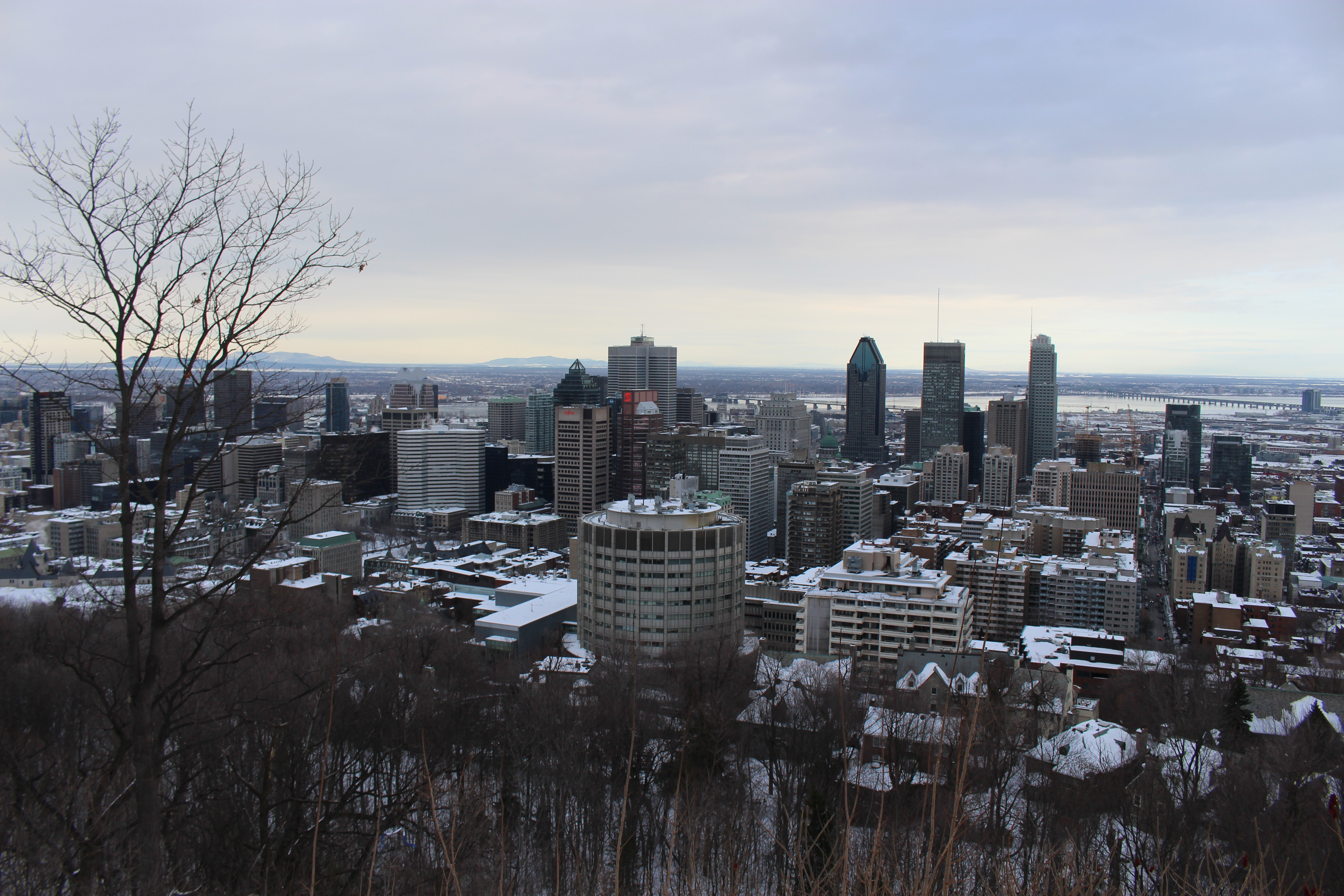 List of cities in Canada by popularity and number