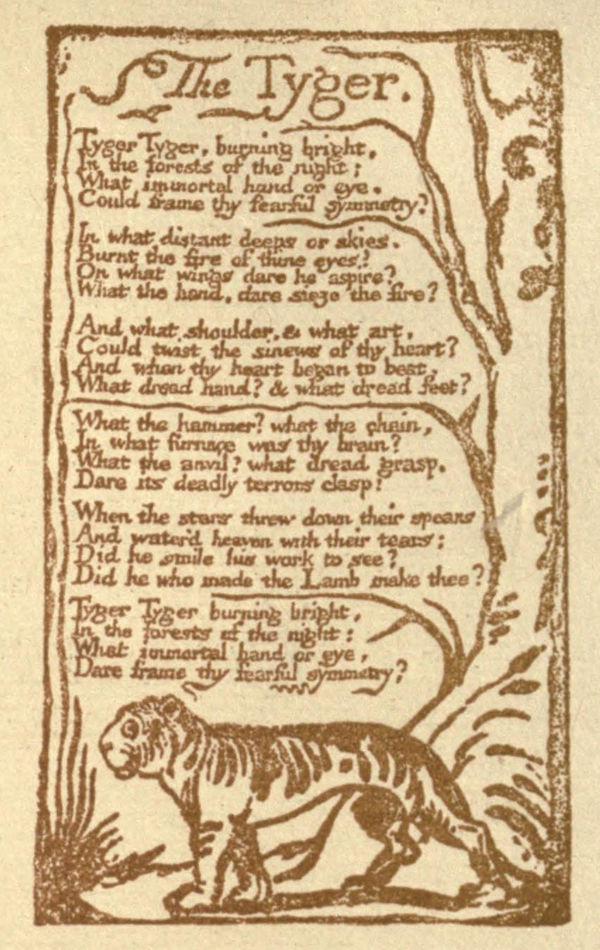 "english essay introductions format Summary of ""The Tyger"" by William Blake"