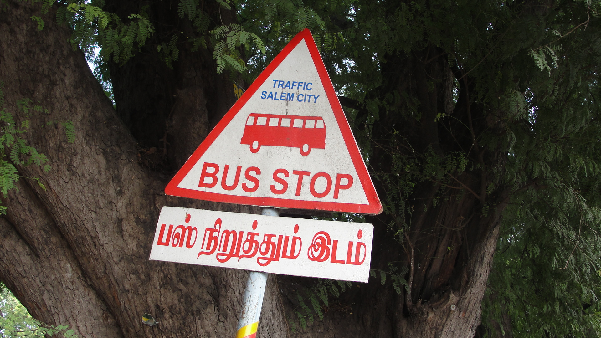 Bus Stop Board File:a Bus Stop Sign Board.jpg