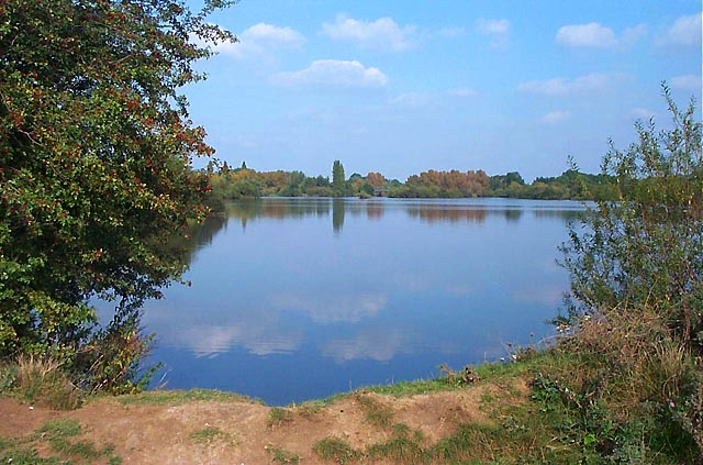 Attenborough Nature Reserve - geograph.org.uk - 18249