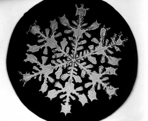 پرونده:Bentley Snowflake18.jpg