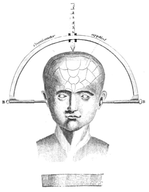 Краниометрия фото
