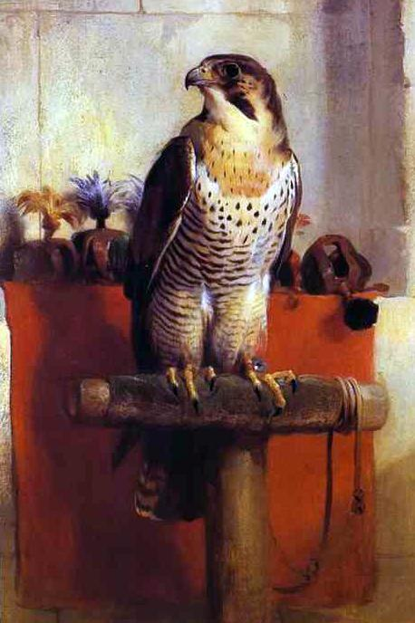 http://upload.wikimedia.org/wikipedia/commons/7/70/Edwin_Landseer._Falcon.JPG