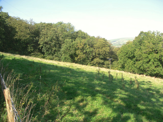 Field and woodland to the north of Coytrahen - geograph.org.uk - 980343