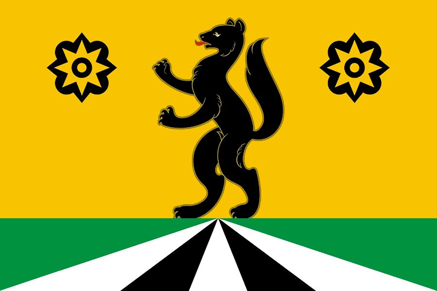 Селемджинский район