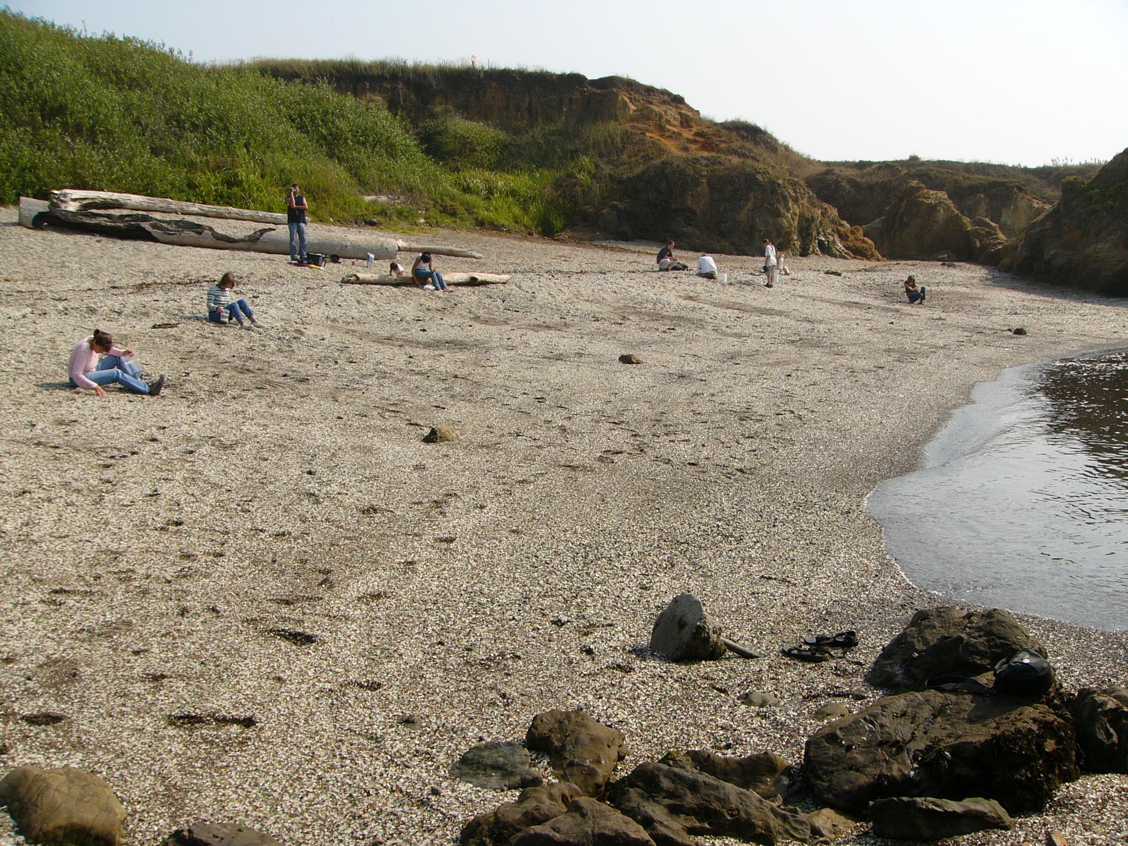 Sklenená pláž Fort Bragg, Kalifornia