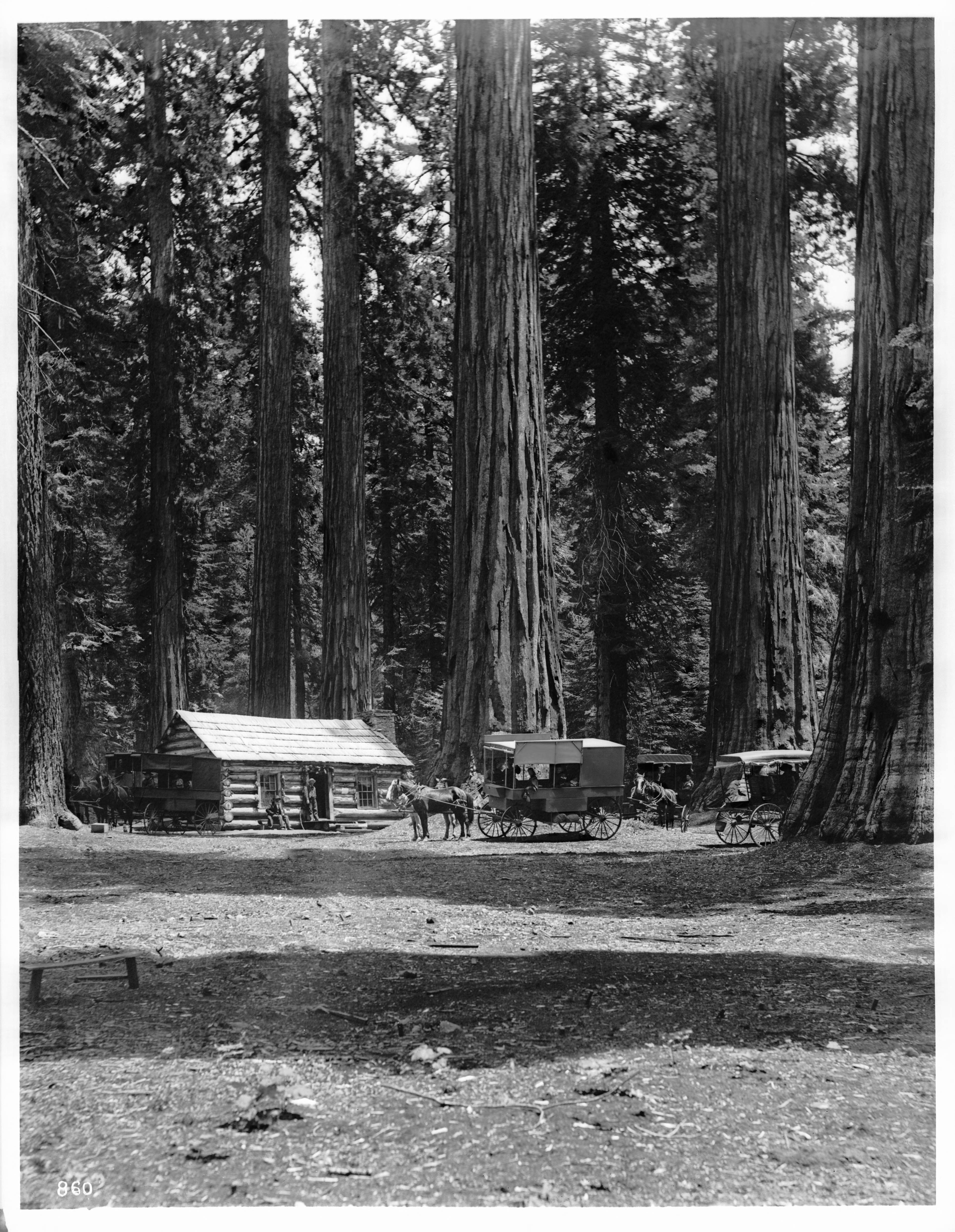 blog curry category cabins from yosemite glacier cabin exterior village point park lodging