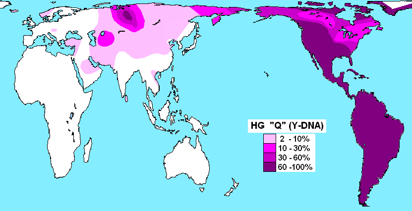 upload.wikimedia.org/wikipedia/commons/7/70/Haplogroup_Q_%28Y-DNA%29.PNG