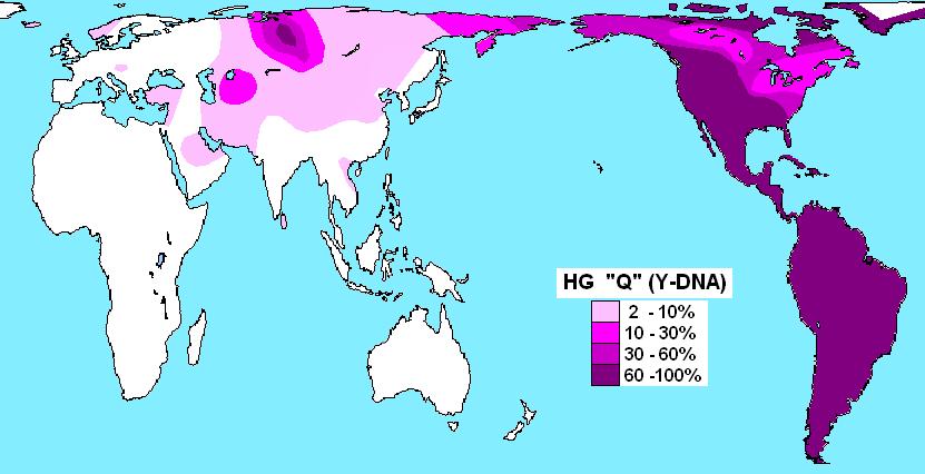 Haplogroup_Q_(Y-DNA).PNG