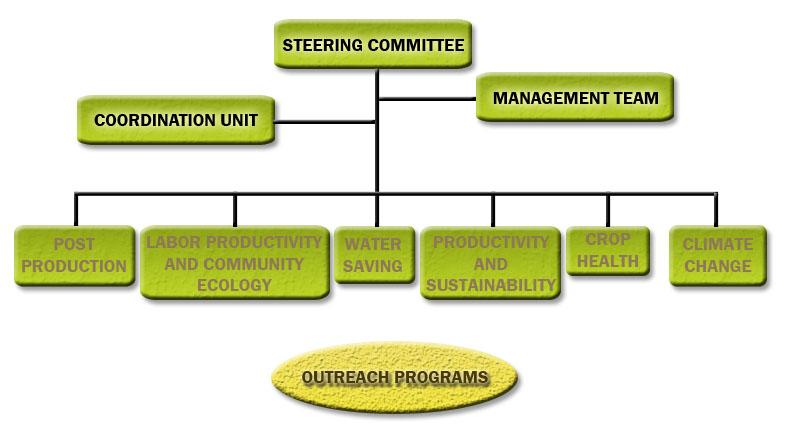 Organizational Chart Production Company: Irrigated Rice Research Consortium (IRRC) - Organizational ,Chart