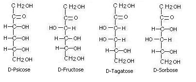 Structural Biochemistrycarbohydratesmonosaccharides Wikibooks