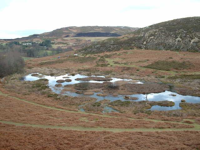Lake at Pensychnant - geograph.org.uk - 122366