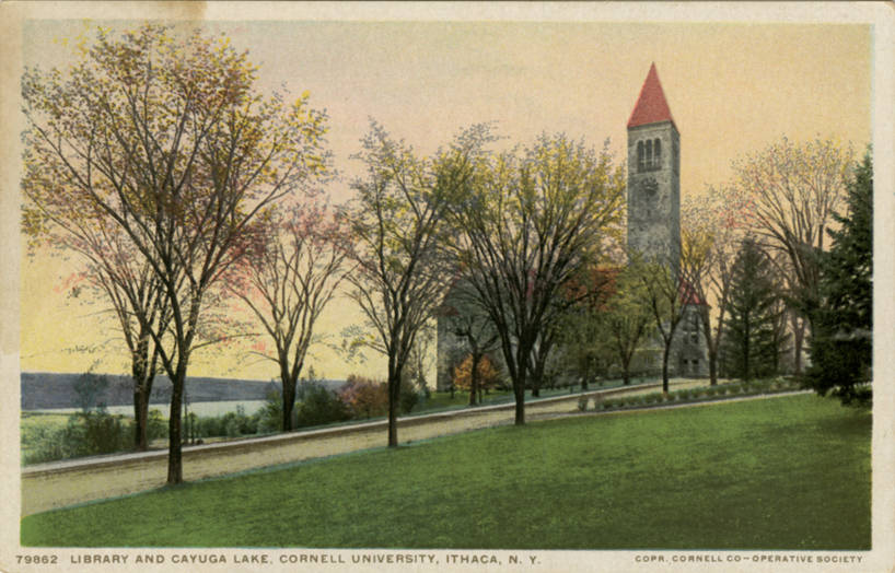 File:Library and Cayuga Lake, Cornell University (NBY 23020