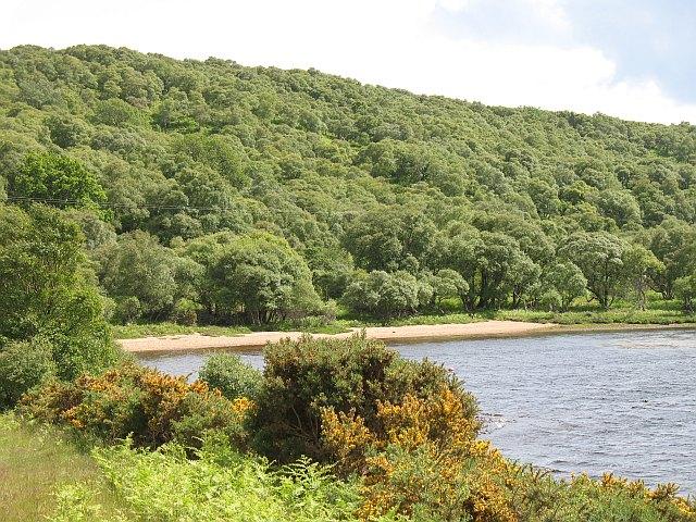 Loch Brora - geograph.org.uk - 1112270