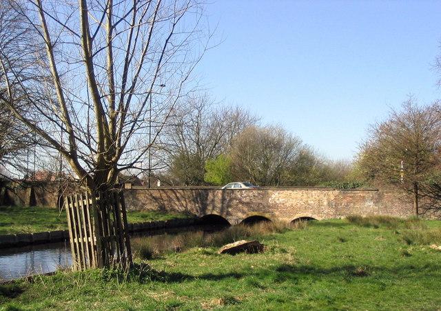 Longford River in Bushy Park - geograph.org.uk - 373825
