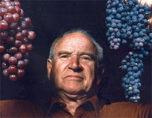Olmo Grapes Wikipedia