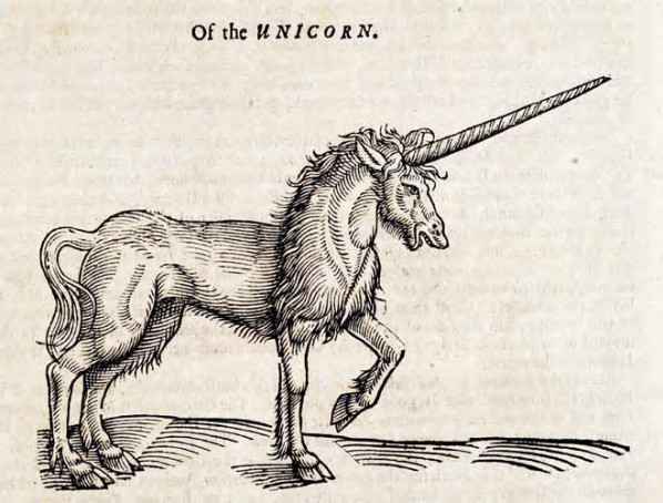 unicorn wikipedia