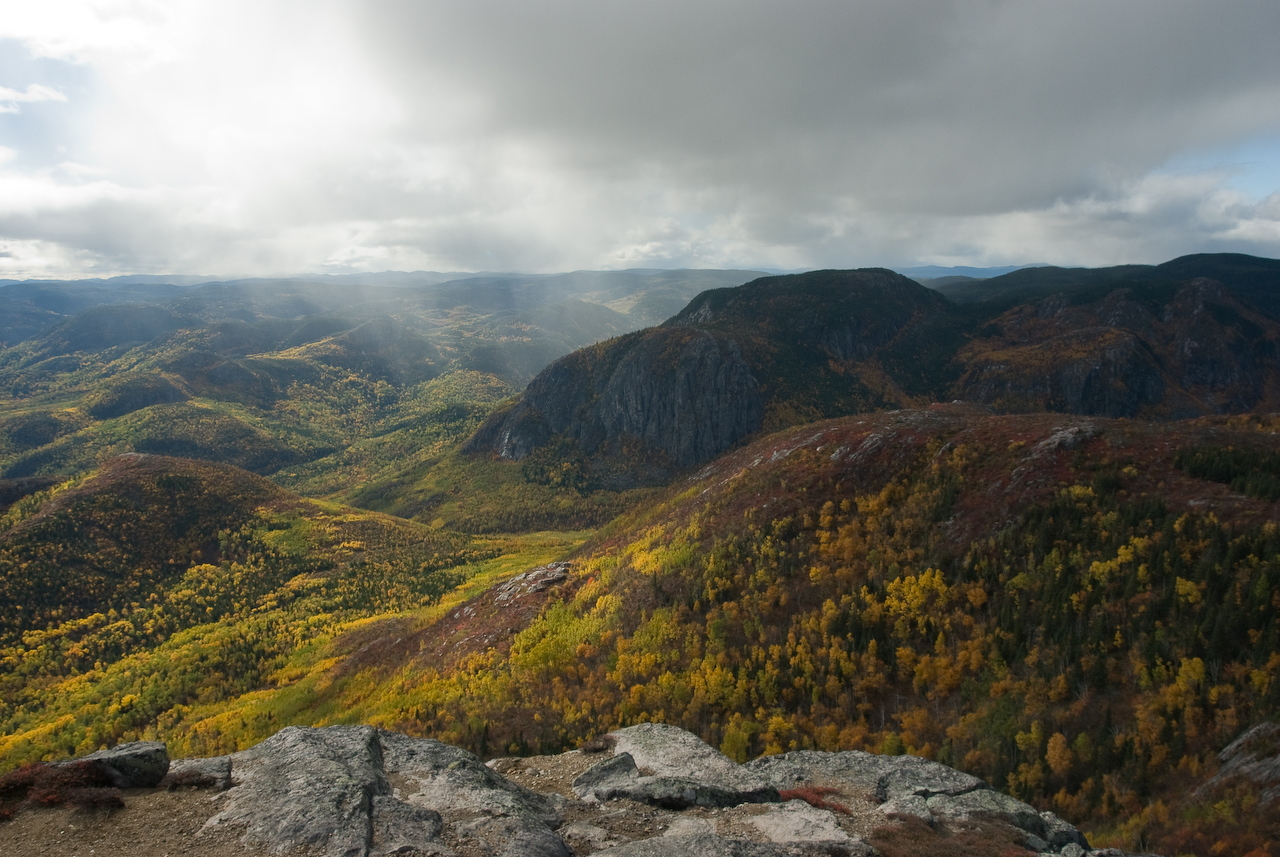 Grands-Jardins National Park - Wikipedia