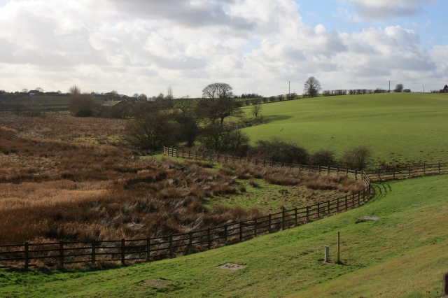 Pasture South of the Lake - geograph.org.uk - 680685