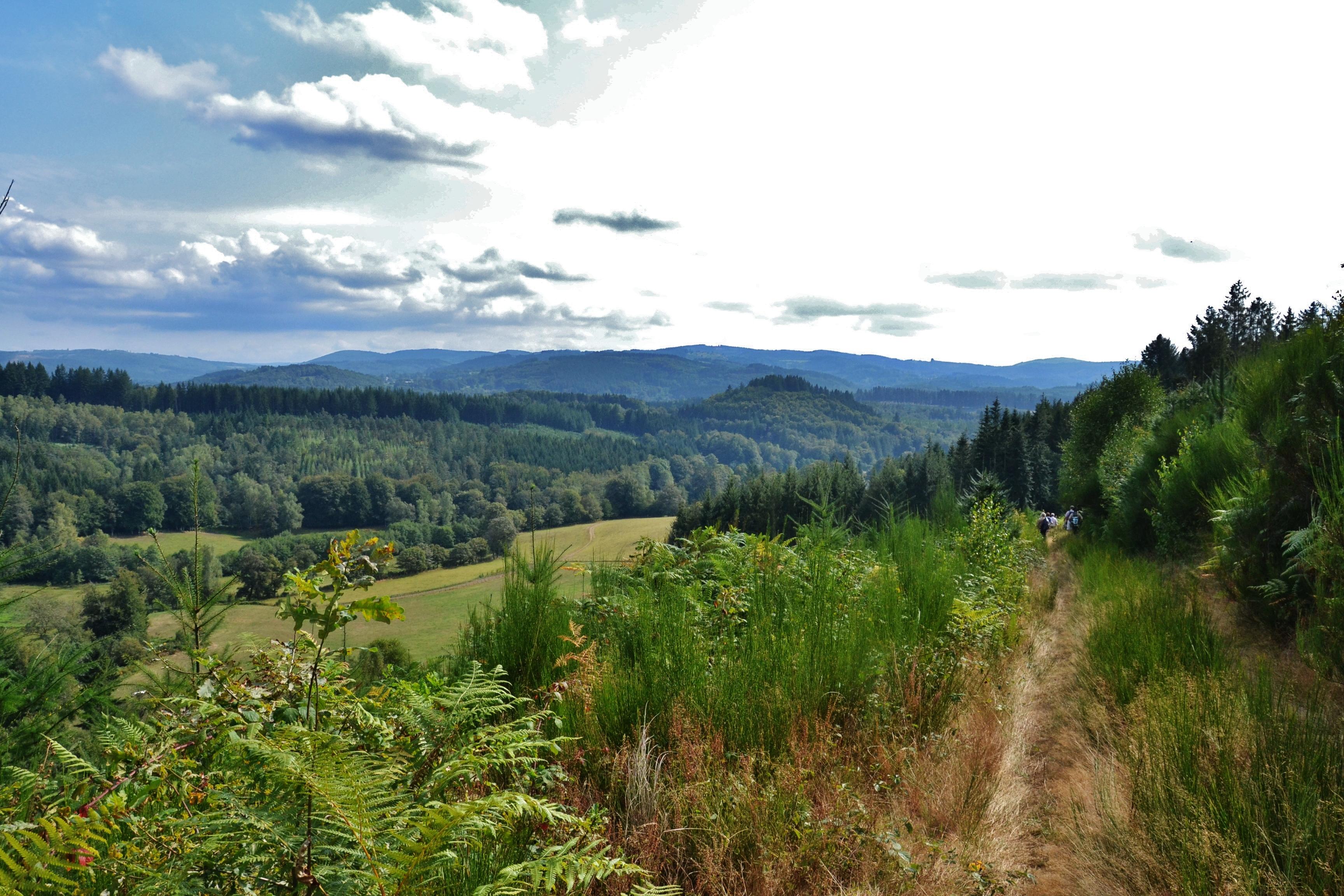 Paysage de la haute vall%c3%a9e de la vienne