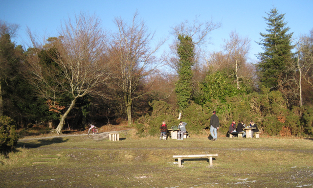 Picnics, Bird of Prey viewpoint, Haldon Forest Park - geograph.org.uk - 1652059
