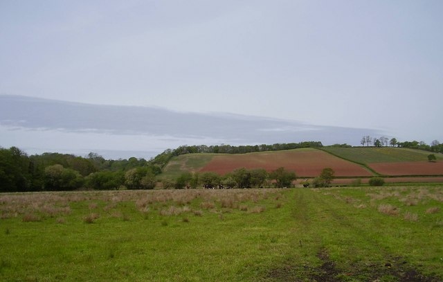 File:Priest Hill - geograph.org.uk - 428818.jpg