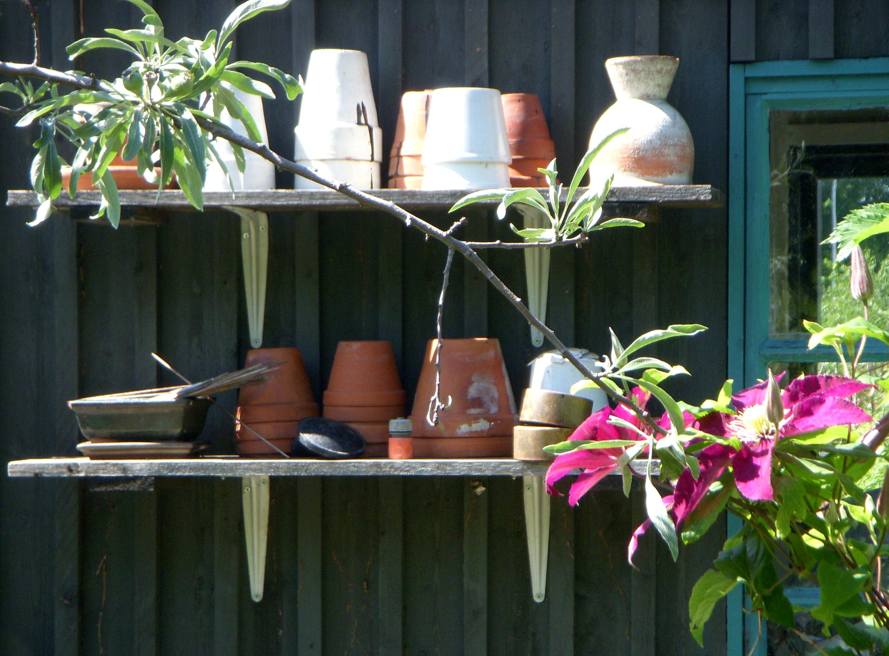 Koloniträdgårdar i stockholm   wikiwand