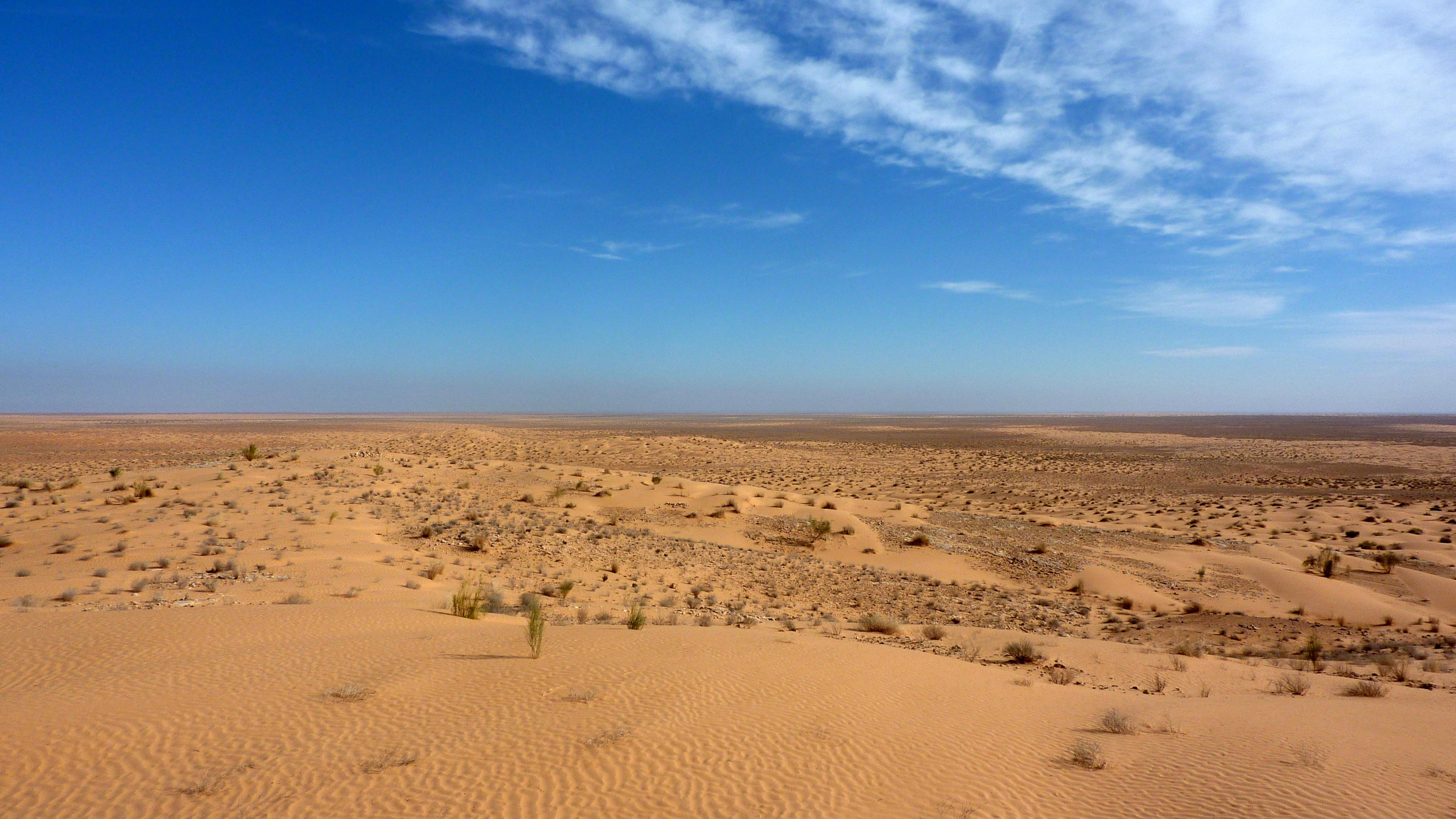 File:Sahara 1.jpg - Wikimedia Commons