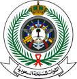 Suudi Arabistan Silahlı Kuvvetleri arması.jpg
