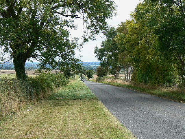 File:Trees along Chipping Norton Road, near Chipping Norton - geograph.org.uk - 1514816.jpg