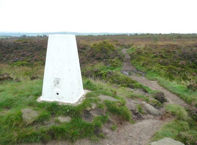 Triangulation pillar, Norland Moor, Norland - geograph.org.uk - 963044