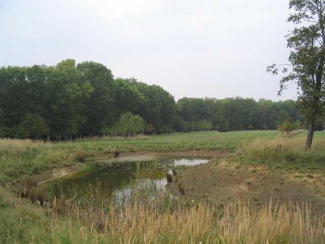 View from the wildlife hide, Fineshade Wood - geograph.org.uk - 261581