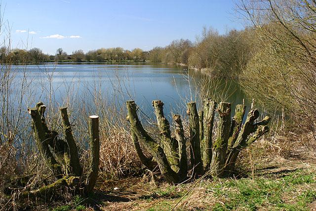 Witney Lake - geograph.org.uk - 346911