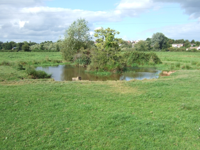 File A Small Pond In The River Exe Country Park Geograph