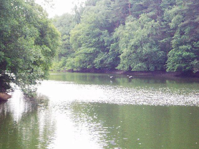Ardingly Reservoir - geograph.org.uk - 21836