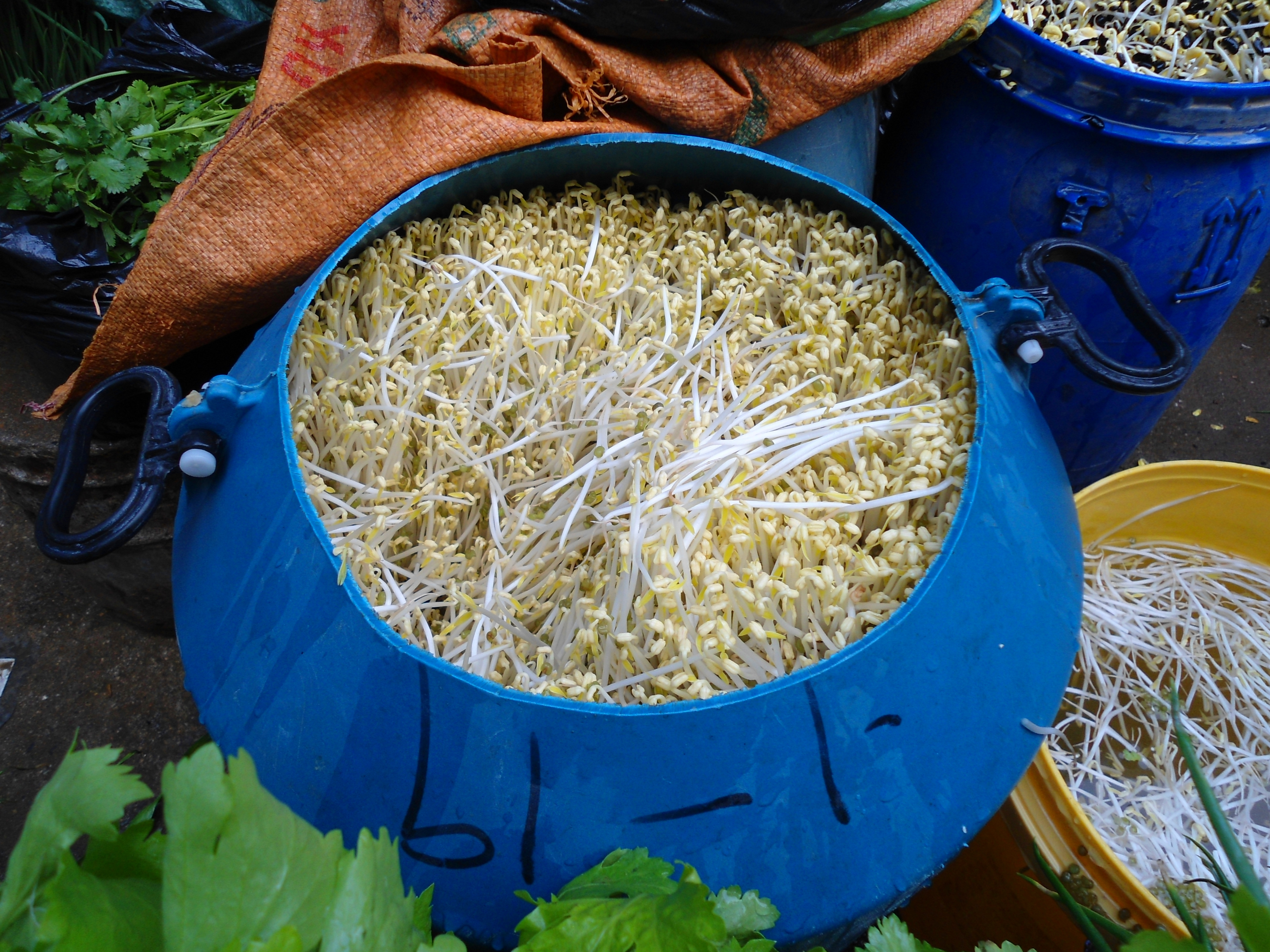 Bean sprouts in a market in Haikou City, Hainan Province, China