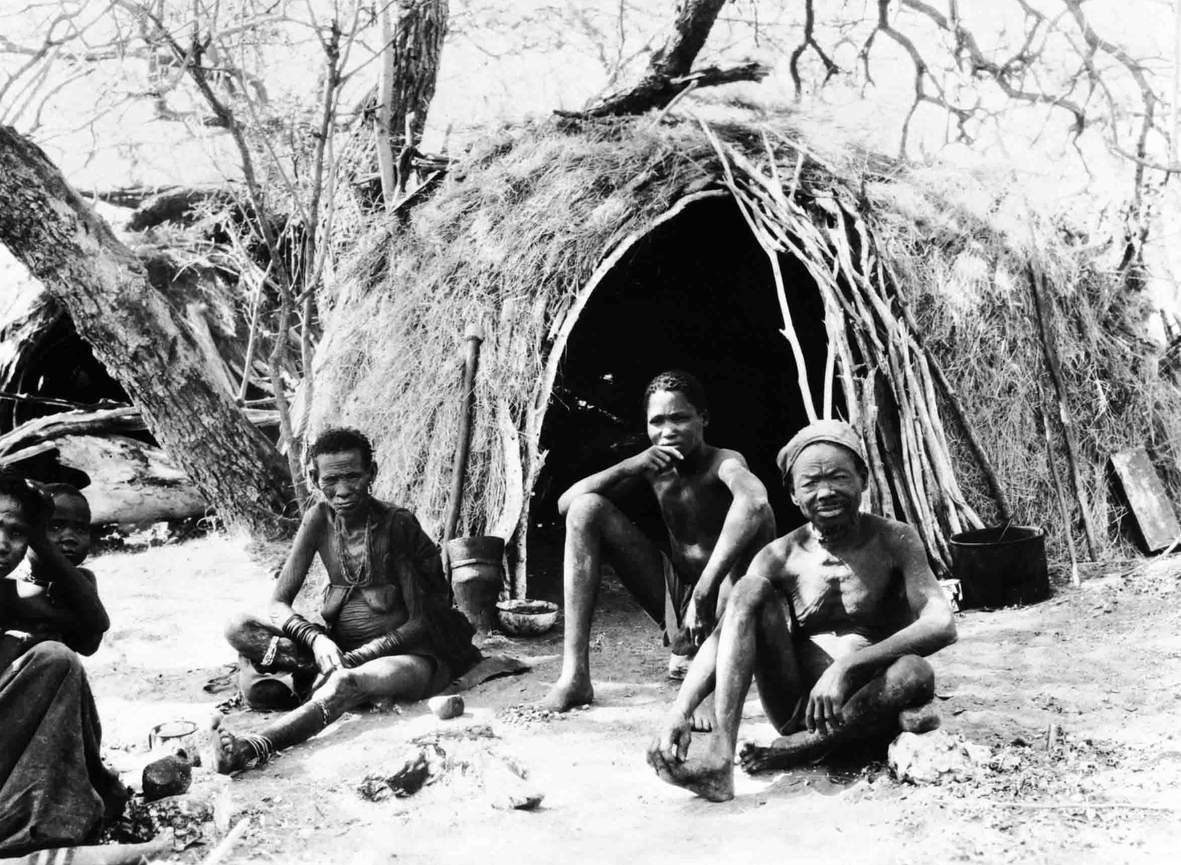 http://upload.wikimedia.org/wikipedia/commons/7/71/Bushmen_San.jpg