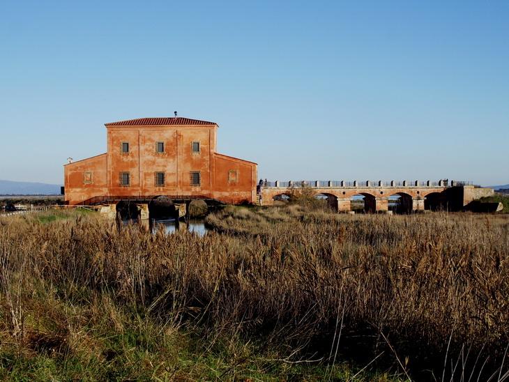 Casa Rossa Ximenes, Castiglione della Pescaia