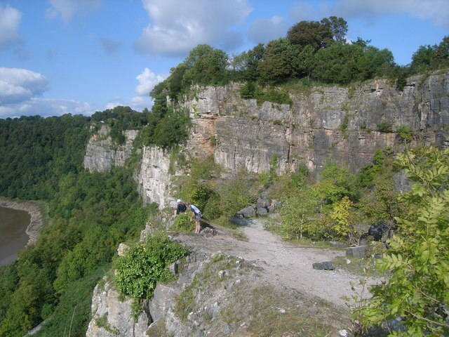 Cliffs above the River Wye at Woodcroft - geograph.org.uk - 1163345