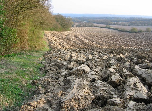 Deeply ploughed field east of Chains Farm - geograph.org.uk - 396466