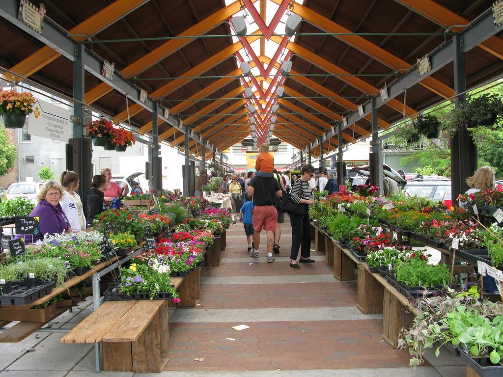 Farmers Market By Food Bazaar Bridgeport Ct Reviews