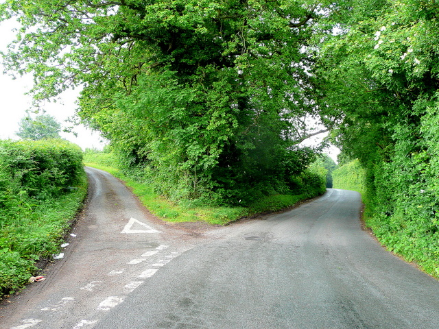 Nicholas Mutton/A fork in the road https://commons.wikimedia.org/wiki/File:A_fork_in_the_road_-_geograph.org.uk_-_558151.jpg