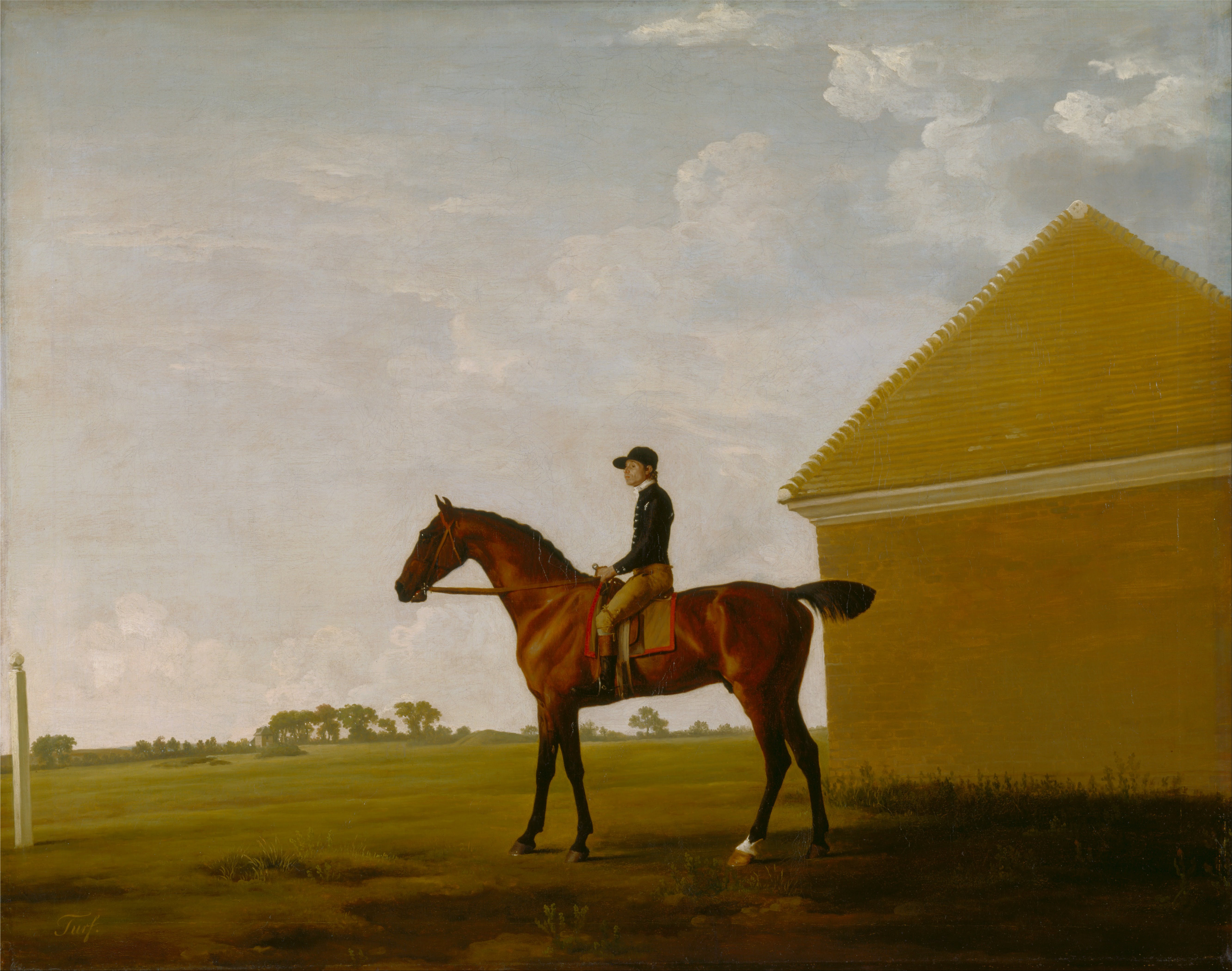 File George Stubbs Turf With Jockey Up At Newmarket