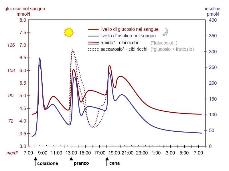 File grafico glucosio insulina wikipedia - Aids periodo finestra ...
