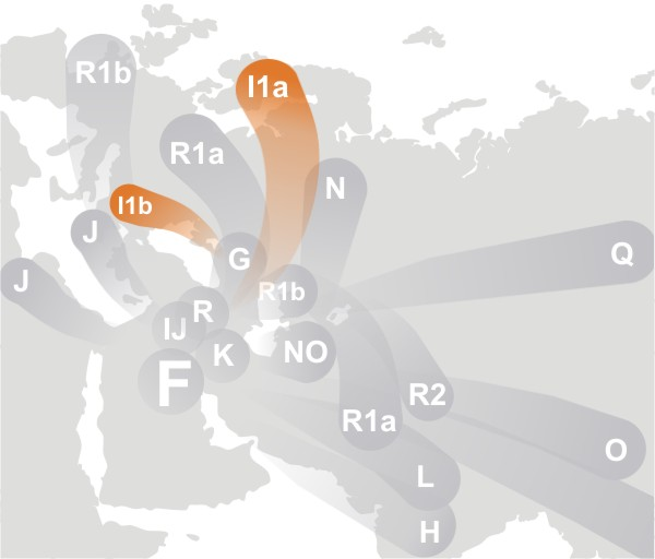 http://upload.wikimedia.org/wikipedia/commons/7/71/Haplogroup_I_%28Y-DNA%29.jpg