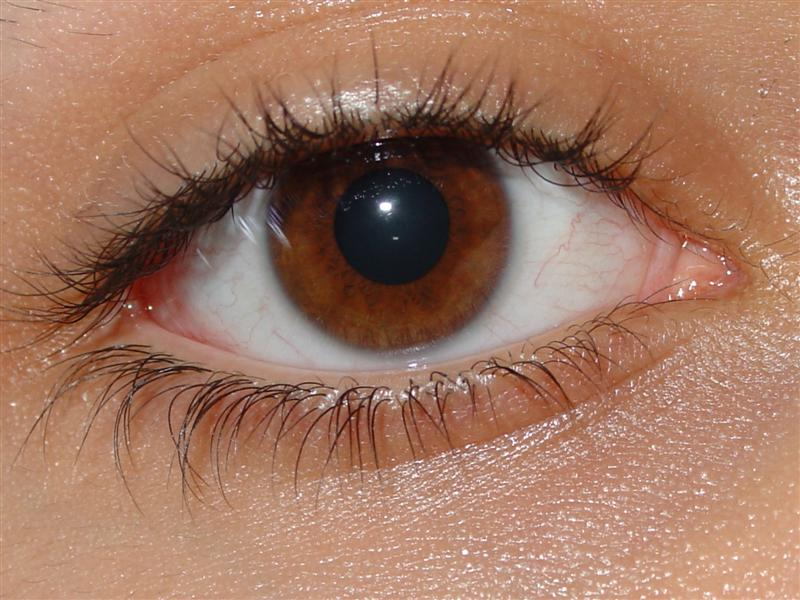 Обладатели светло-карих глаз