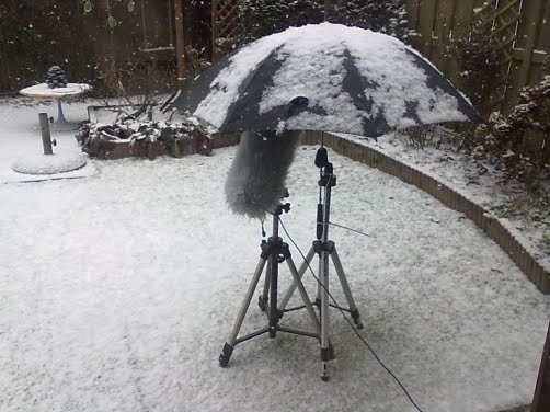 Microfoon in de sneeuw