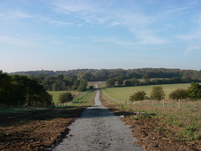 New track into Hainault Forest - geograph.org.uk - 273900