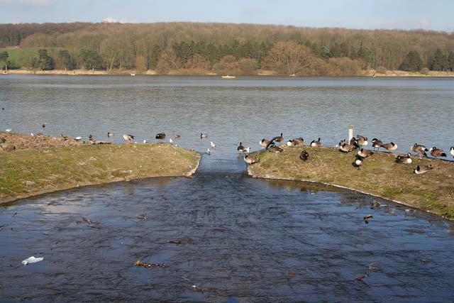 Outflow at Thornton Reservoir - geograph.org.uk - 331931