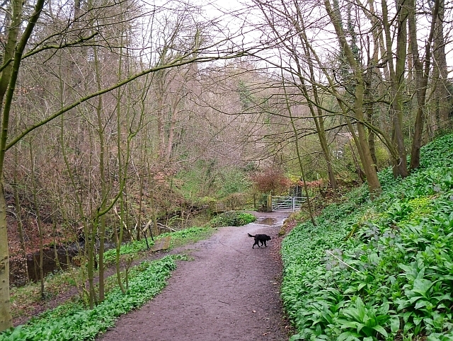 Path leaving Skipton Wood